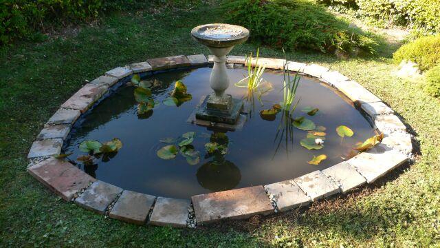 pond_2a