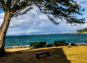 green bench rainbow by Michael